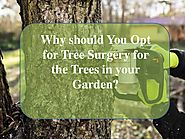 Benefits of opting tree surgery services for your garden