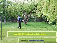 Incredible health benefits of gardening
