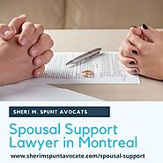 Spousal Support or Alimony Lawyers in Canada
