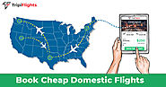 Domestic Flight Deals- Travel within Boundaries