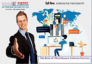 The Role of Microfinance Solution Services – Binary Computer