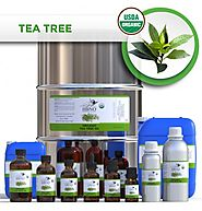 Buy 100% Organic Tea Tree Essential Oil In Bulk-Essential Natural Oils