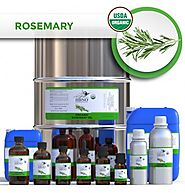 Shop Now! Organic Rosemary Essential Natural Oils at Best Price