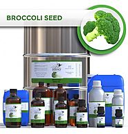 Shop Now! Broccoli Seed Oil at an Affordable Price