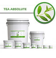 Buy Now! Tea Absolute Essential Natural Oils Online at Best Price