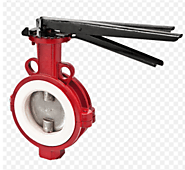 Define the structure of the butterfly valve