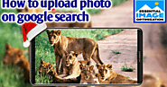 Important 4 step to upload photo on google search engine - Clickndia