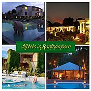 Hotels In Ranthambore | Ranthambore National Park