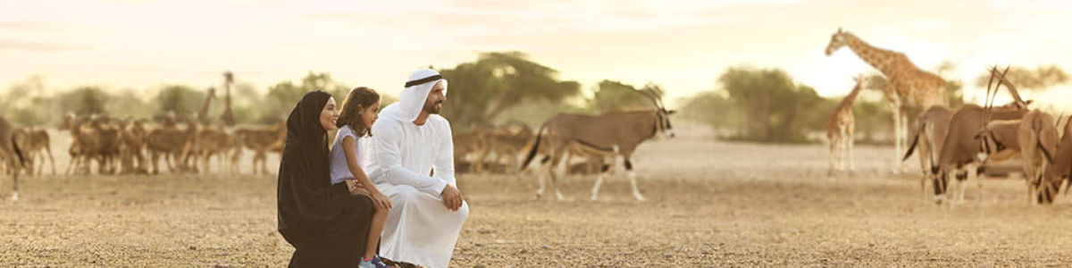 Headline for Activities to Try Out on Sir Bani Yas Island – Desert Oasis
