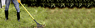 Smart Garden Tools at Most Reasonable Prices