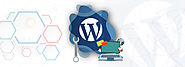 10 Best Tools for WordPress Development