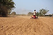 Top Agriculture Equipment for Soil Preparation - agricultural implements