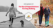 The Rise Of Digital Solutions for Dog Walking - Appdupe