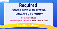 SENIOR DIGITAL MARKETING MANAGER Sales & Marketing jobs in Udaipur | Perzue.com