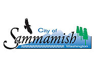 Sammamish Landscaping - Brediger Landscaping and Artificial Turf