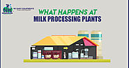 What Happens at Milk Processing Plants
