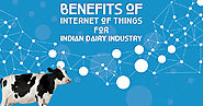 Benefits of Internet of Things for Indian Dairy Industry
