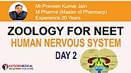 [Day 2] NEET Zoology-Video Lecture on Division of Human Nervous System by PK Jain -Kaysons Education