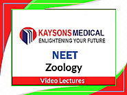 NEET Zoology - Video Lecture on AUTONOMIC NERVOUS SYSTEM by Praveen Sir Kaysons Education