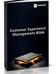 Ebook | Customer Experience Management Bible