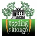 SeedingChicago (@SeedingChicago)
