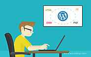 wordpress development services | wordpress expert