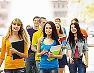 Ansys Assignment Help- Your Key to Academic Success