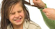 How to Get Rid of Head Lice | Natural Home Remedies