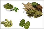 Top Benefits of Using Kratom Powder on a Regular Basis