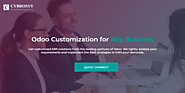 Odoo Customization for Any Business Any Industry Global Clients