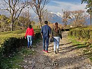 Get a good Palampur Accommodation and you can have a very good time now