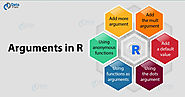 Arguments in R Programming Language - Get a Deep Insight! - DataFlair