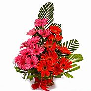 Send Flowers to Bhopal at very reasonable Price – YuvaFlowers