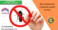 Website at https://www.doorstephub.com/pest-control-services/Hyderabad
