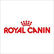 Hund / Royal Canin