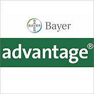 Advantage / Bayer