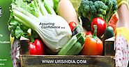Best ISO Certification in India: What is Food Safety Management System standard?