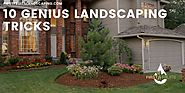10 Genius Landscaping Tricks - First Fruits Landscaping