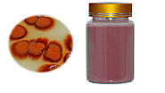 Red Yeast Rice Powder For Cholesterol | Health & Personal Care