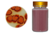Natural Colorants Red Yeast Rice Powders Used for Personal Health Care