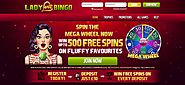 Know the Tips before Play Best Bingo Game Online