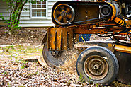 Stump Grinding: Benefits You Enjoy from It