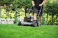 Lawn Care Basics That You Should Keep in Mind