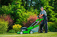 Landscaping Professional vs. DIY Work: Which Is Better?
