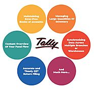 Give the Advantage to your Business with the Best Tally Customization Services