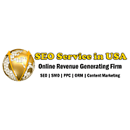 Multiple Industry SEO Services USA, SEO for All Industry Domains in USA