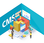 Professional Training course for building a CMS in Vadodara