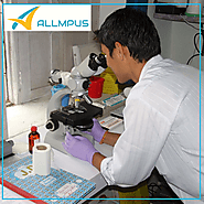Website at https://www.allmpus.com/azithromycin-impurity-p-usp-p