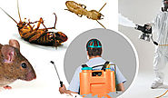 Simple To Use Tips For Pest Control To Make Your Home Pest Free
