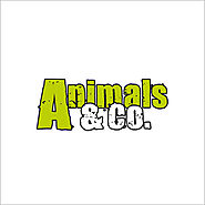 A / Animals & Co